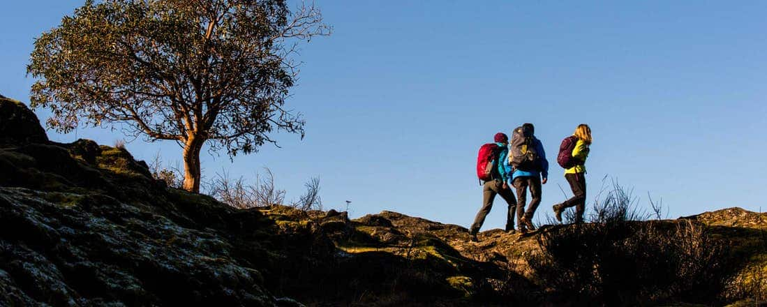 hikers in need