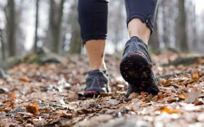 10 Facts About Arch Support and Cushioning for Hiking